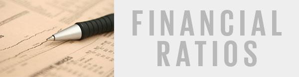 how to interpret financial ratios quick guide